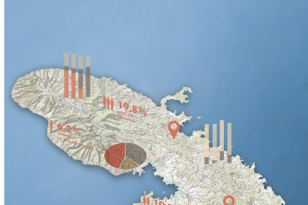 Cartographie Martinique
