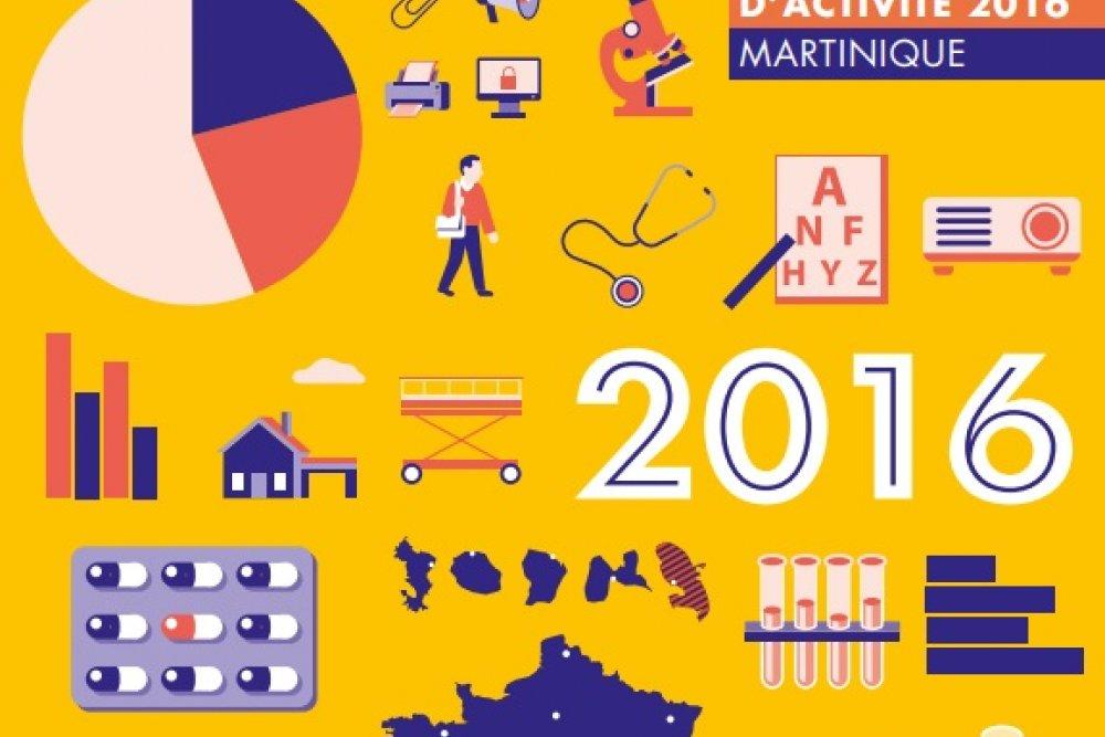 Rapport d'activité : découvrez les grands travaux de l'année 2016
