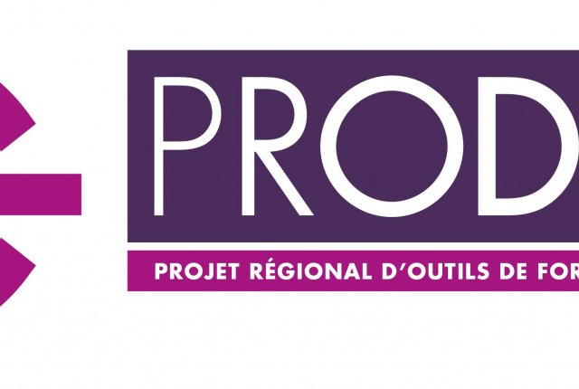 PRODIG - La formation Digitale
