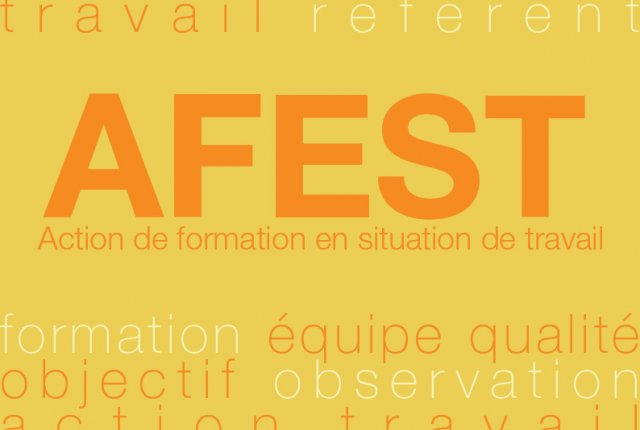 Actions de Formation En Situation de Travail (AFEST)